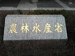2009年1月26日農林水産省-thumb-250x187-210