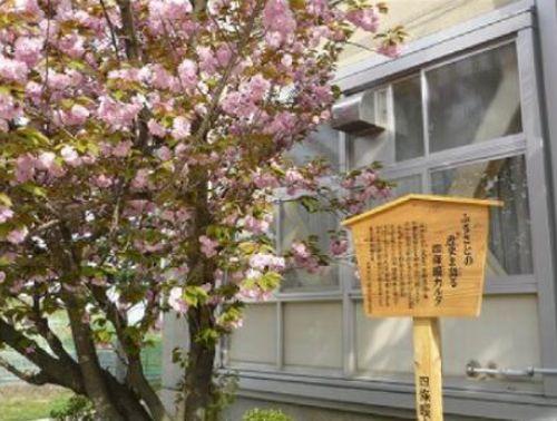 四條畷中学校