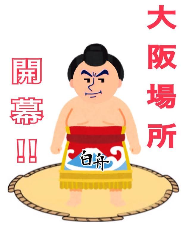 相撲 白舟